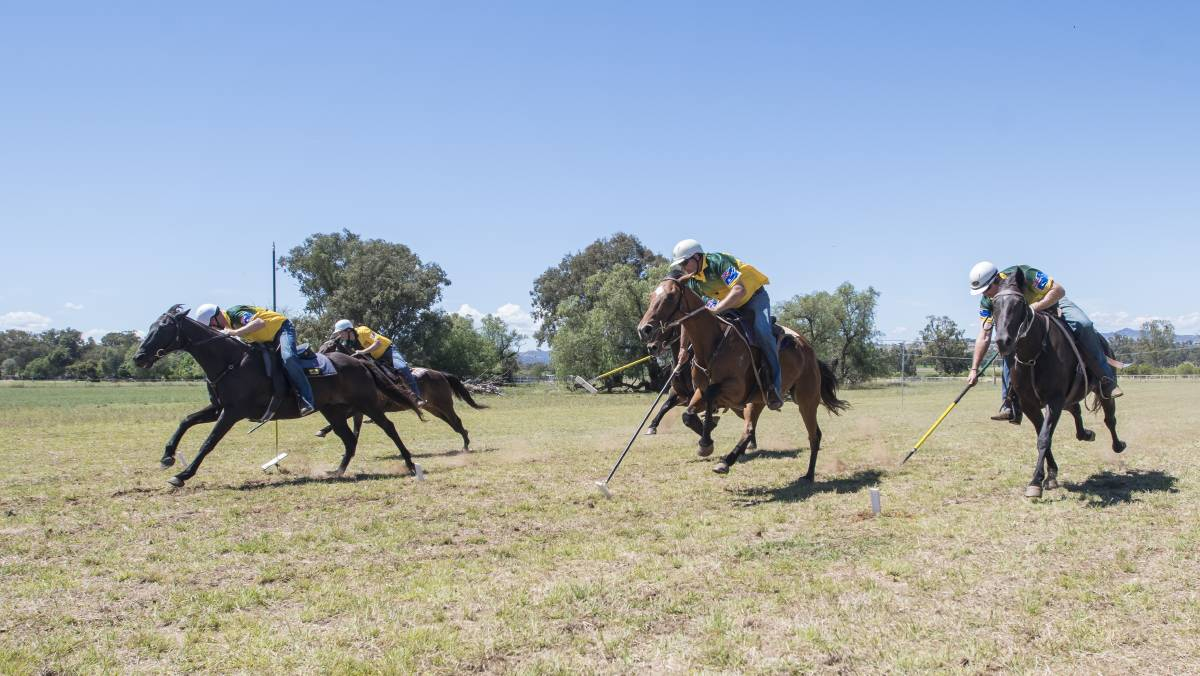 Tent pegging is a high adrenaline sport that many people around the world participate in. The game originated from a military exercise of ancient origins ... & Tentpegging- A history
