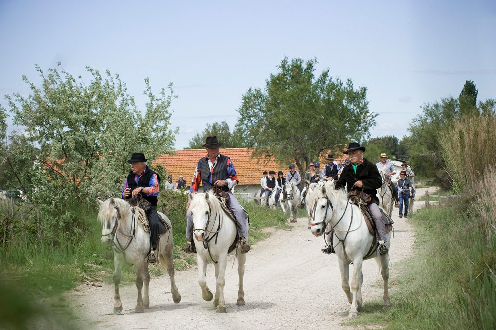 horse riding holiday France