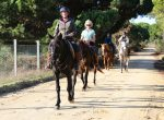 horse riding holiday Portugal