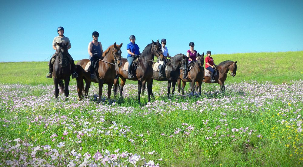 horse riding holiday Spain