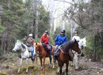 Horse riding holidays Tasmania Australia