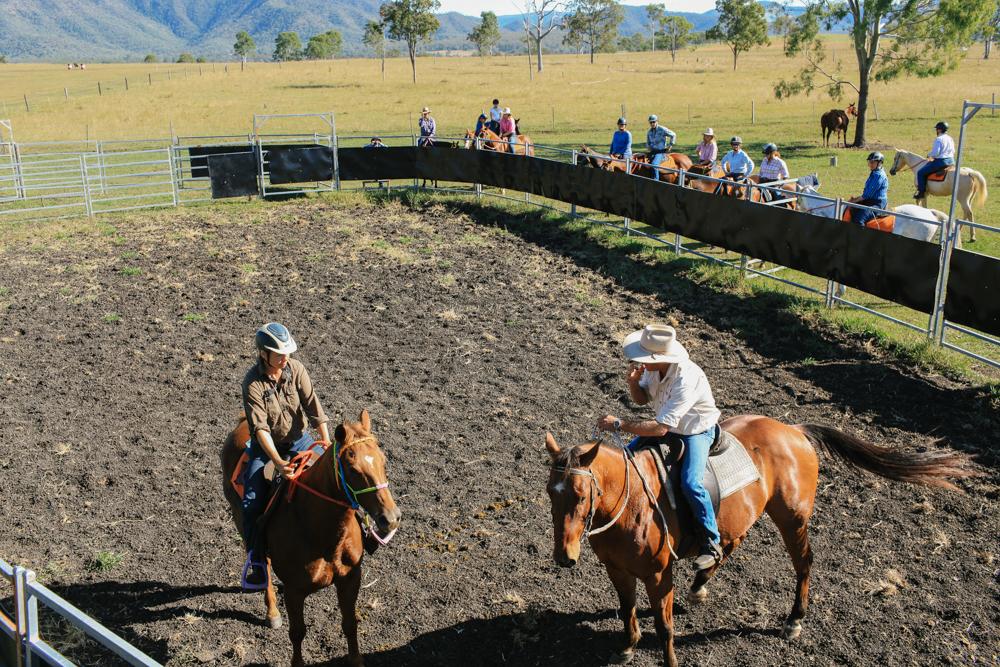 campdrafting horse riding holiday