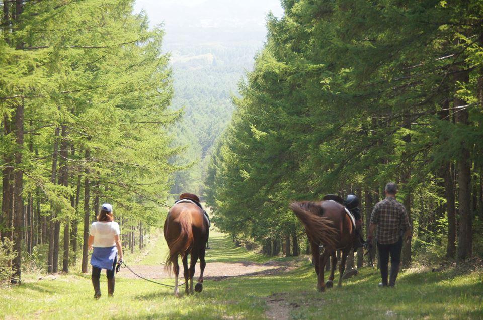 horse riding holiday japan