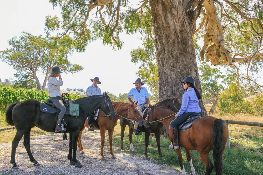 horse riding holiday Barossa Valley