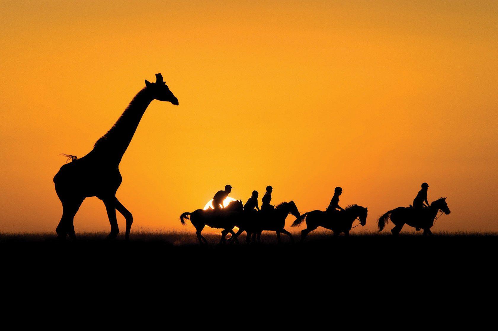 riders with giraffe at sunset horse riding safari kenya by globetrotting