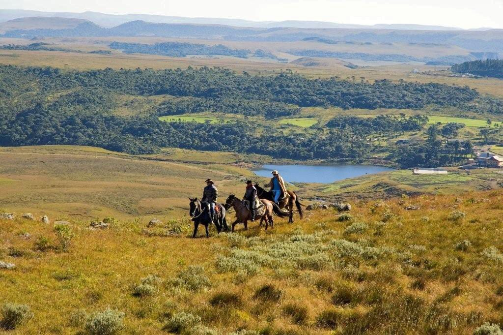 riders on forest plain near lake in brazil horse riding holiday by globetrotting