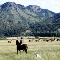 horse riding holiday patagonia, argentina