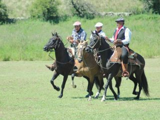 gauchos playing polo on estancia ride horse riding holiday in Sierra Chicas, Argentina by Globetrotting