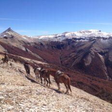 Horse riding holiday Patagonia