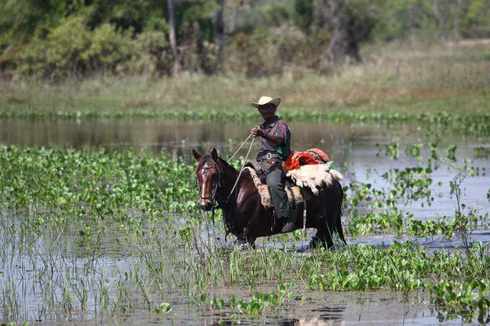 horse riding holiday brazil