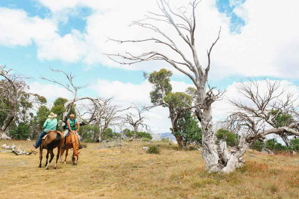 man from snowy river ride
