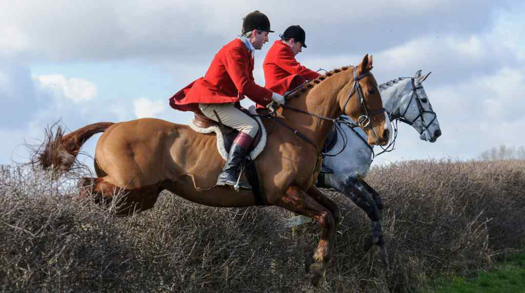 The Cottesmore Hunt meet at Ladywood Lodge, Knossington, on Tuesday 3rd March 2015.