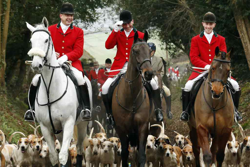 Members of the Old Surrey Burstow and West Kent Hunt ride to Chiddingstone Castle for the annual Boxing Day hunt in Chiddingstone, south east England December 26, 2014. Since a ban stopped fox hunting with hounds, hunts continued with dogs chasing down a pre-laid scented trail instead of a fox.  REUTERS/Luke MacGregor (BRITAIN - Tags: ANIMALS SOCIETY)