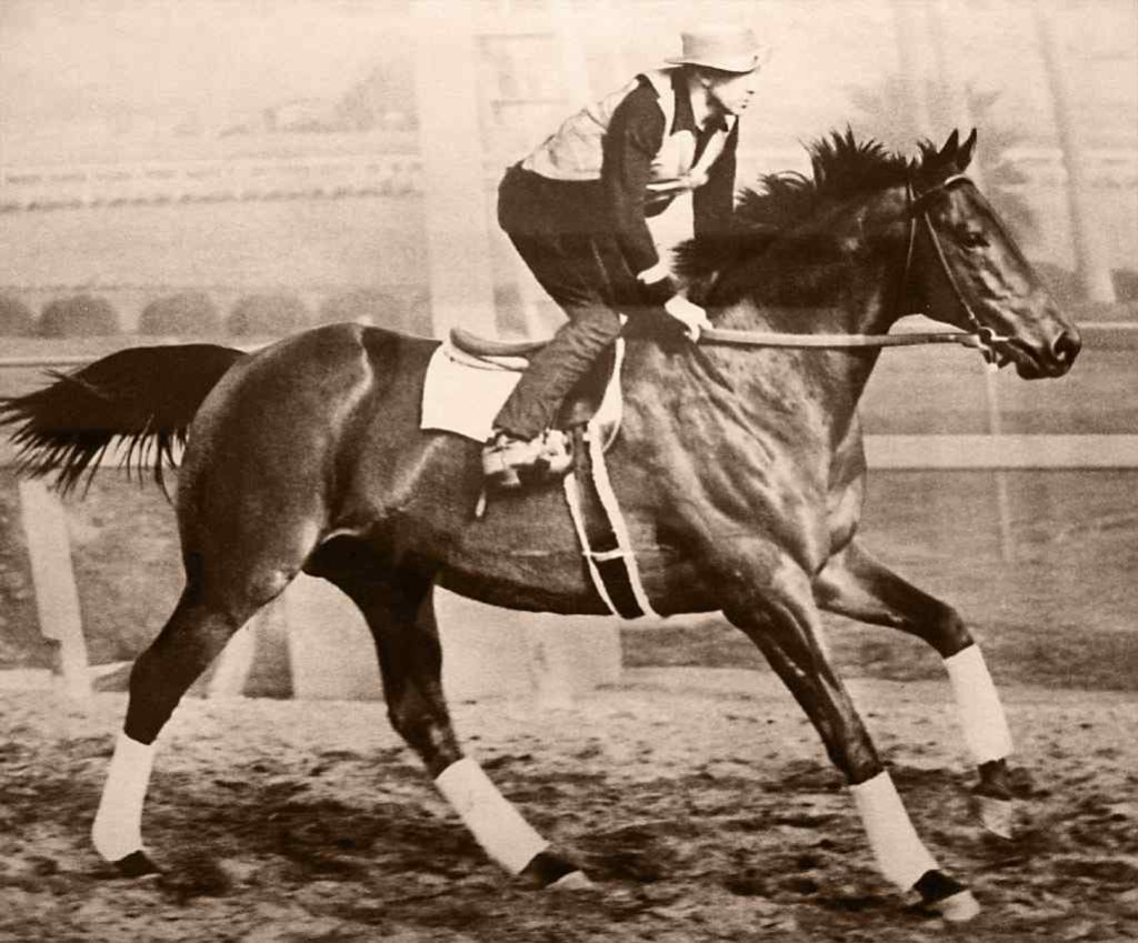 seabiscuit-feature-image