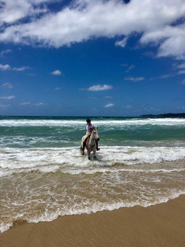 Globetrotting horse riding holiday Bush & Beach Ride, Noosa, Sunshine Coast, Queensland, Australia