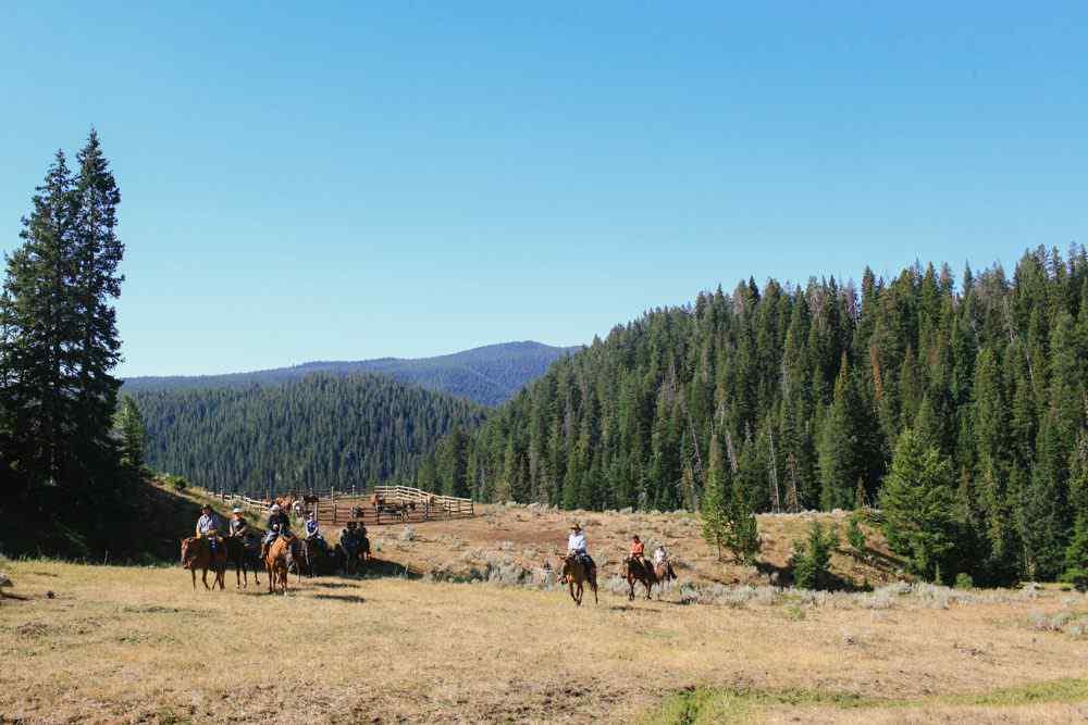 horse riding holiday wyoming