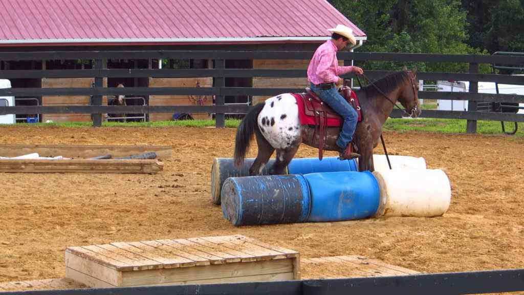 extreme-cowboys-2