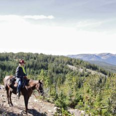 travelling solo on a horse riding holiday