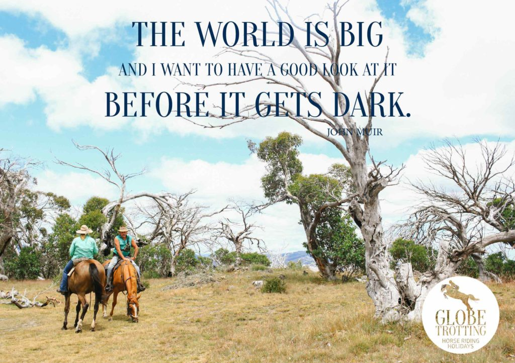 horse riding holiday quote