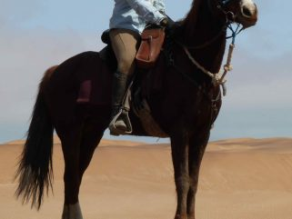 Globetrotting horse riding holiday in Namibia