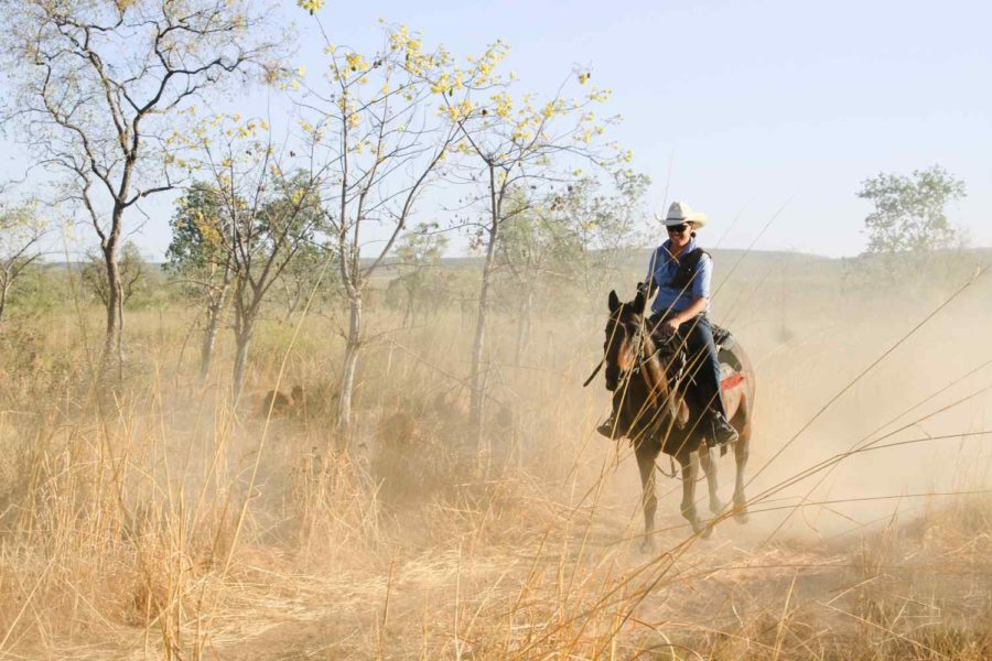 the kimberley horse ride
