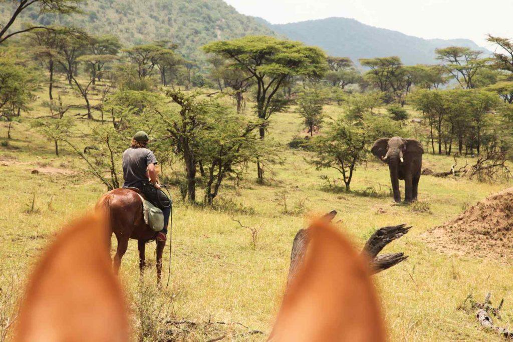 globetrotting.maasai-mara-ride-4