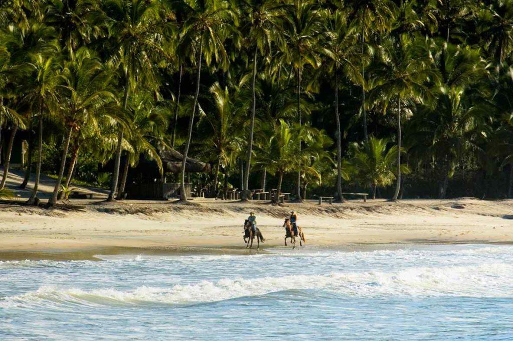 horse riding holiday bahia beach