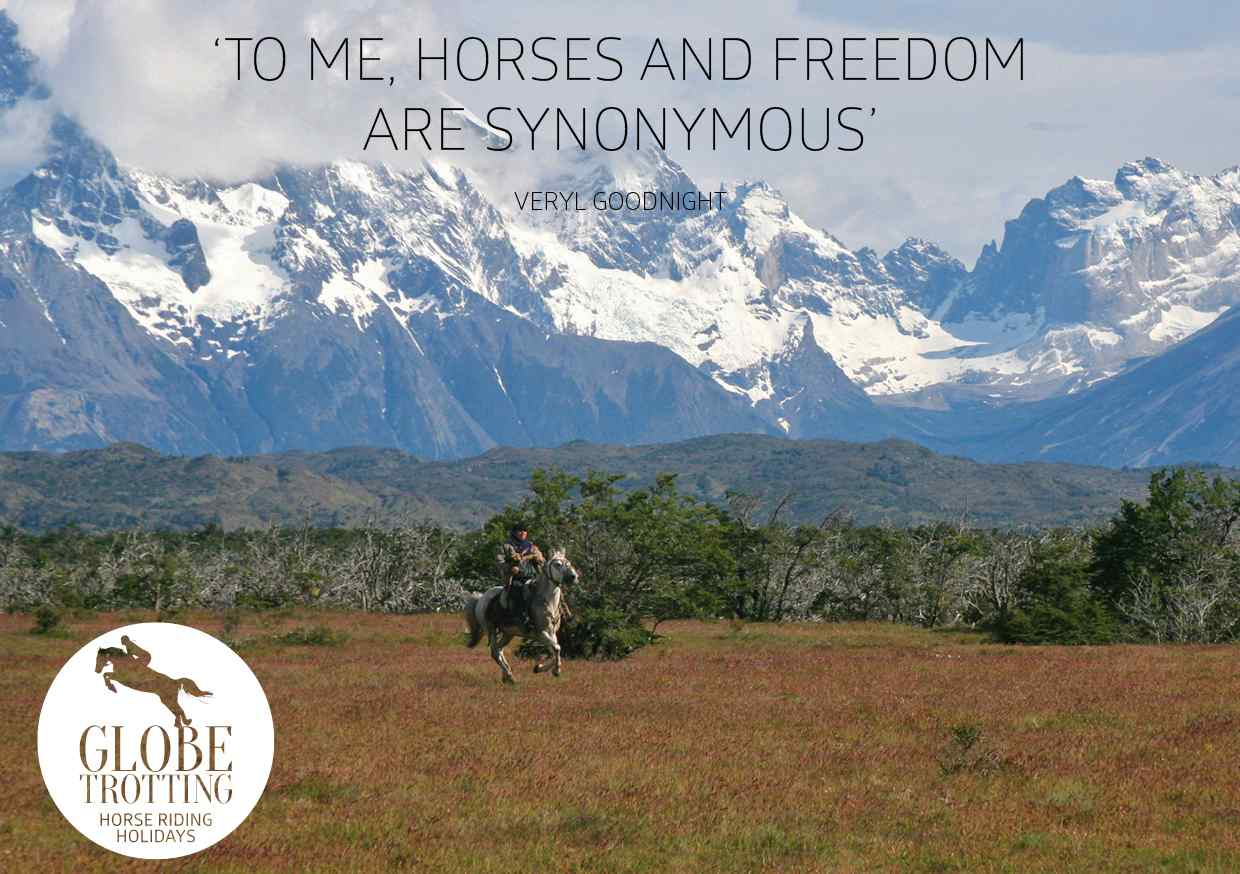 horse quotes by globetrotting