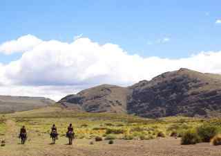 travel insurance for horse riding holidays