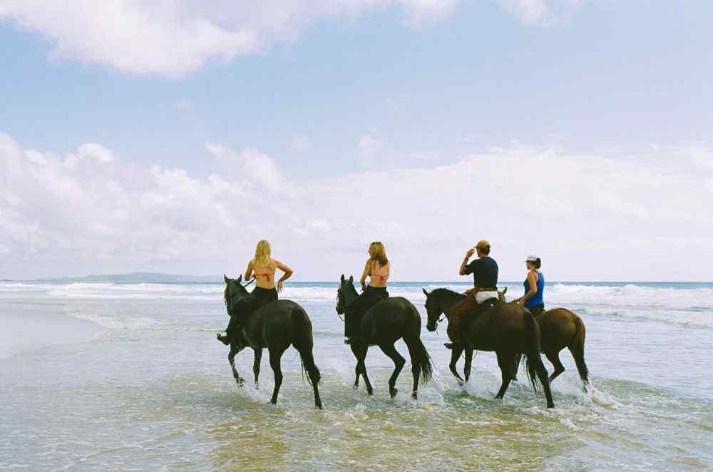 horse riding holiday noosa