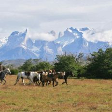 Horse riding holiday torres del paine, chile
