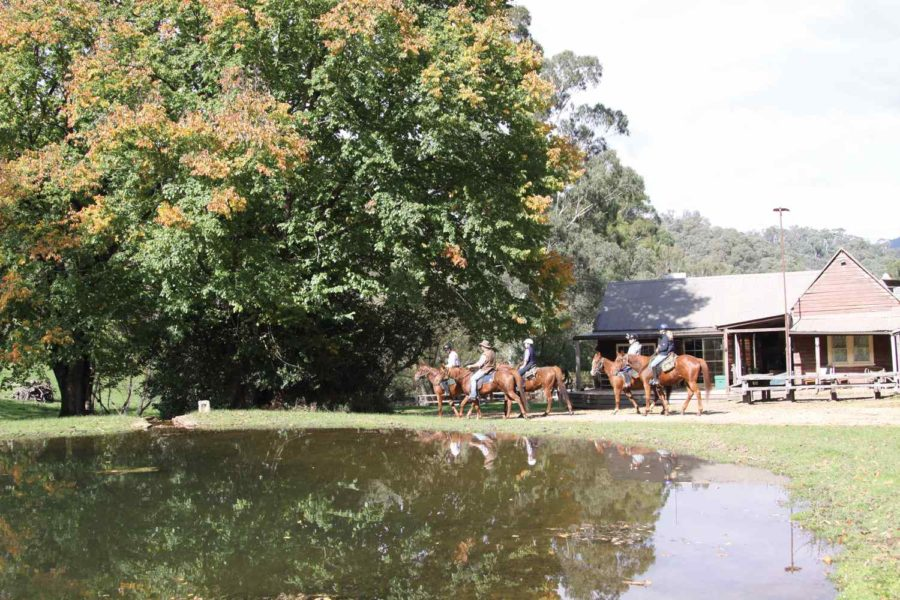 Man from Snowy River horse riding holiday