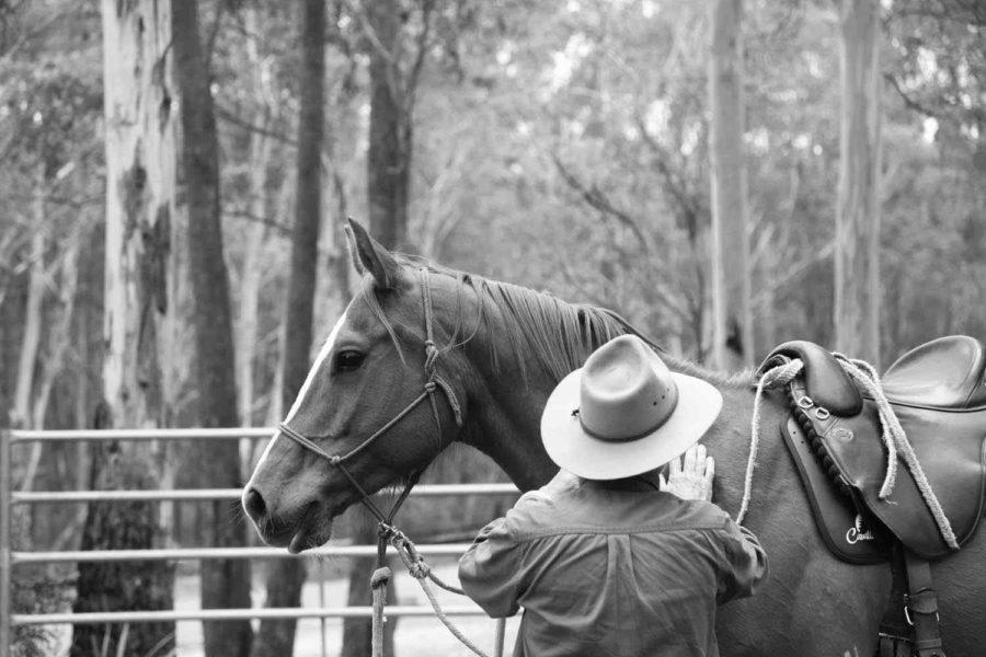 horse riding holiday tasmania