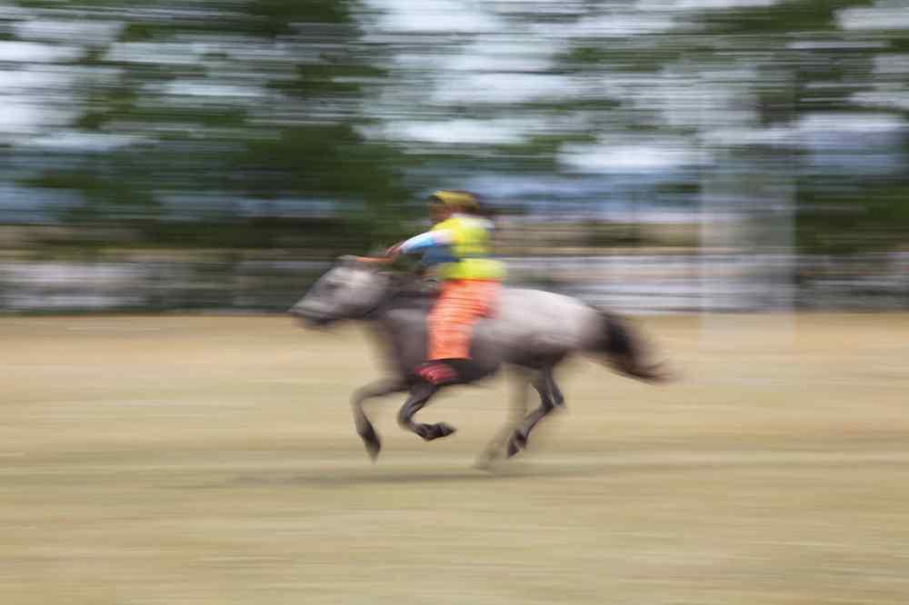 horse riding holiday mongolia
