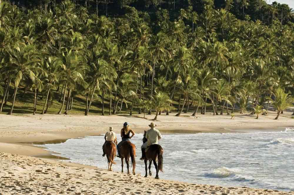 beach horse riding holiday brazil