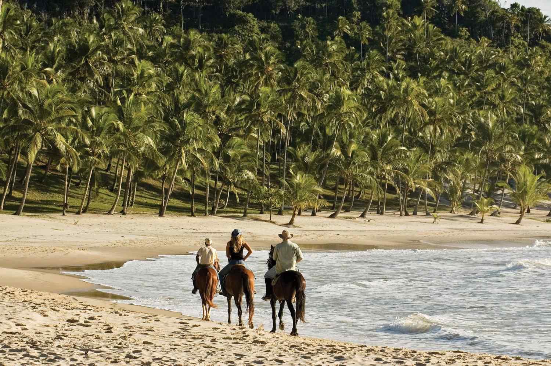 beach horse riding holiday brazil