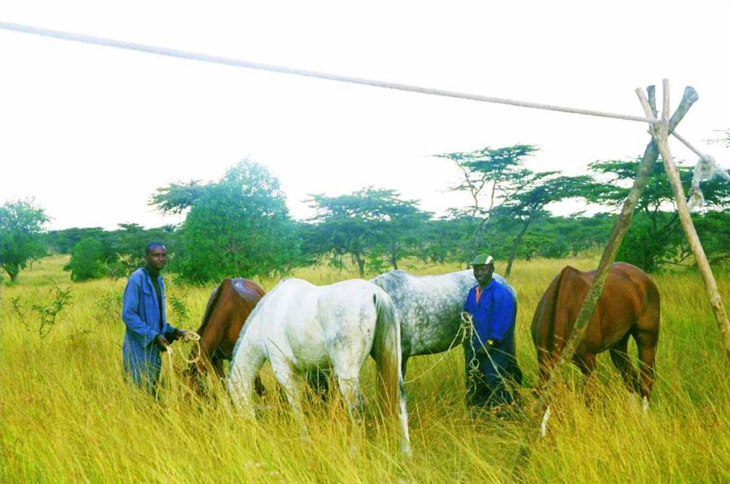 horse riding safari kenya