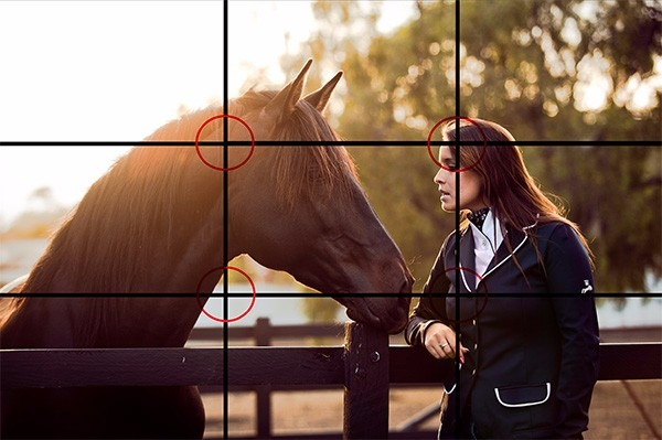 horse riding photography grid